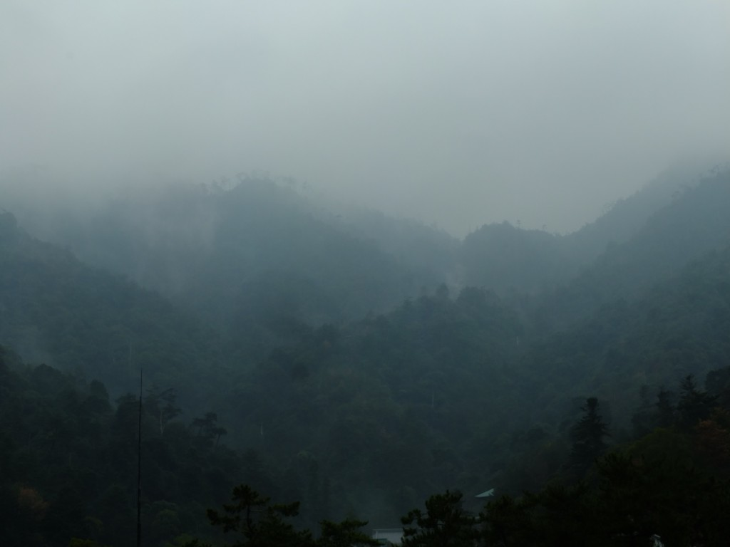 berg in nebel