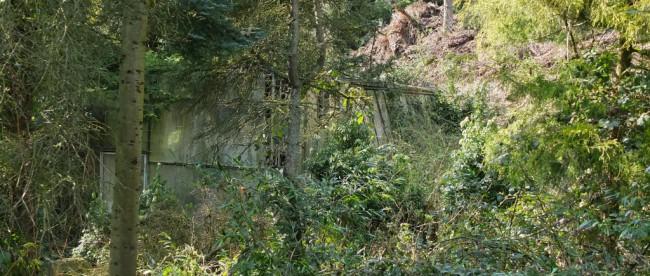Wandern NRW Velbert Gewächshaus verlassen