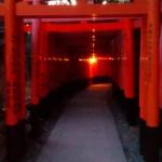 Fushimi Inari Tori Gang Kyoto